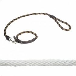 Collier et laisse cuir/corde pour chien Norton